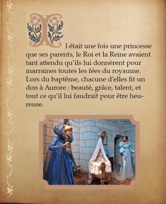 https://www.chateaudusse.fr/wp-content/uploads/2015/03/Belle-livre4-01.jpg