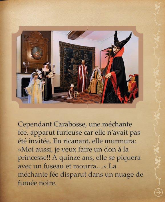 https://www.chateaudusse.fr/wp-content/uploads/2015/03/Belle-livre4-021.jpg