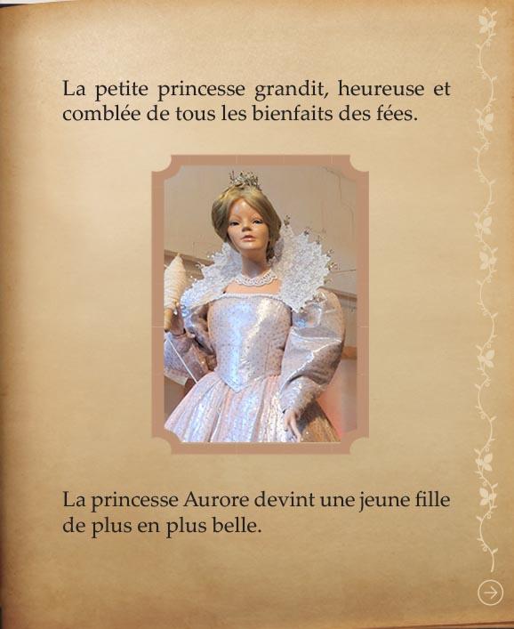 https://www.chateaudusse.fr/wp-content/uploads/2015/03/Belle-livre4-041.jpg