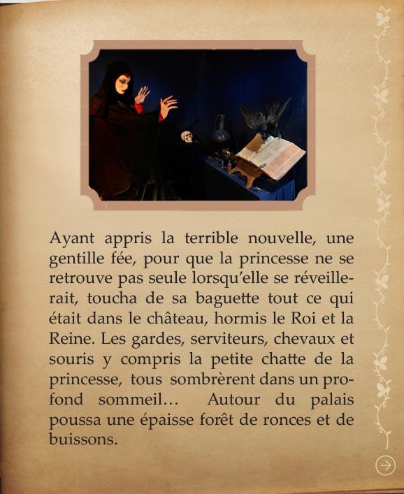 https://www.chateaudusse.fr/wp-content/uploads/2015/03/Belle-livre4-061.jpg