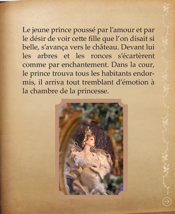 https://www.chateaudusse.fr/wp-content/uploads/2015/03/Belle-livre4-08.jpg