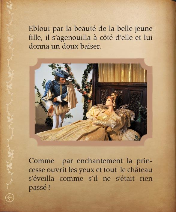 https://www.chateaudusse.fr/wp-content/uploads/2015/03/Belle-livre4-091.jpg